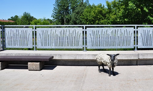 Bellwether - one sheep on the loading platform.