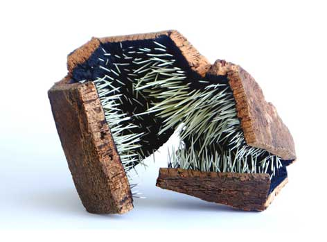 Geometric sculpture. The exterior layer is made from a cork surface and the interior is covered with protruding porcupine needs.
