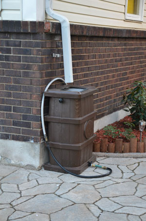 Example of a rain barrel in a residential area