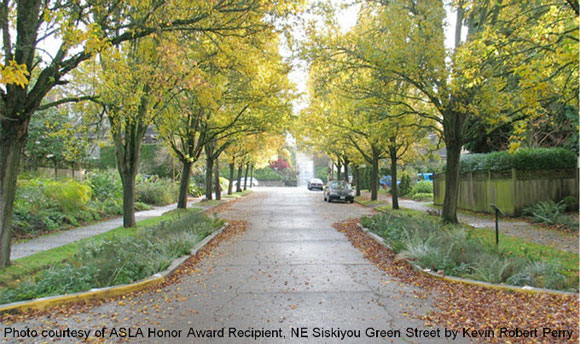 Example of a street narrowing where bioretention structures were implemented within the right of way