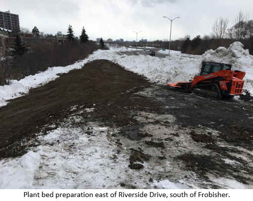 Plant bed preparation east of Riverside Drive, south of Frobisher.