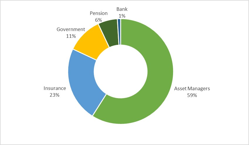 Pie chart showing the distribution of investor type. Duplicated in table provided.