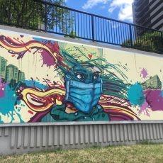 Signs of hope: Ottawa window and sidewalk art