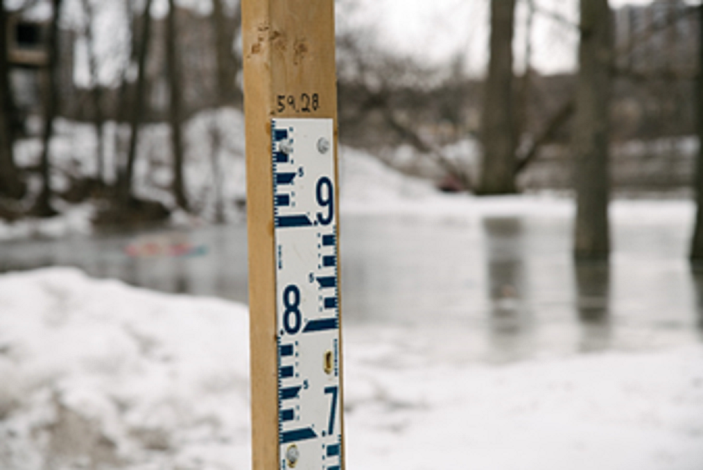 Staff gauge surrounded by snow, water and trees
