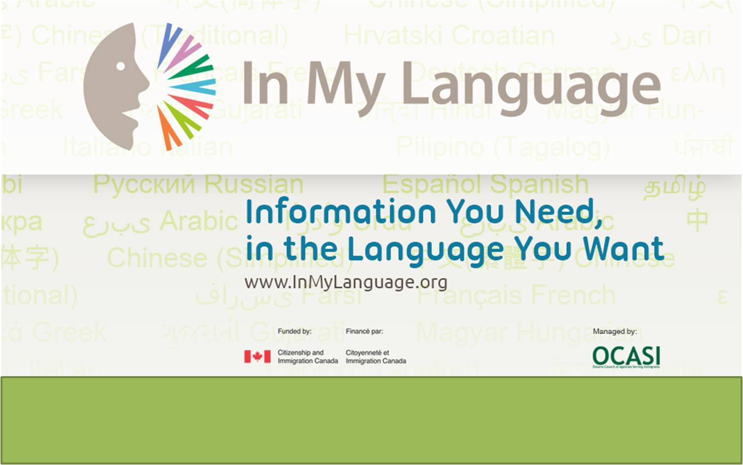 Information You Need in the Language You Want