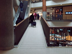 A ramped floor with gradual level changes that meet accessibility requirements is preferred over stairs.