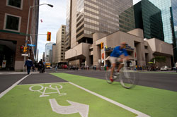 Laurier Avenue Segregated Bike Lanes