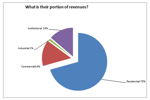 chart that shows the proportion of revenues per customer category